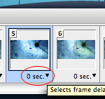 Frame delay
